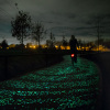 Van Gogh-Roosegaarde Bicycle Path by Daan Roosegaarde