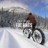 The 5 Best Fat Bikes