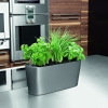 Self-Watering Indoor Planter